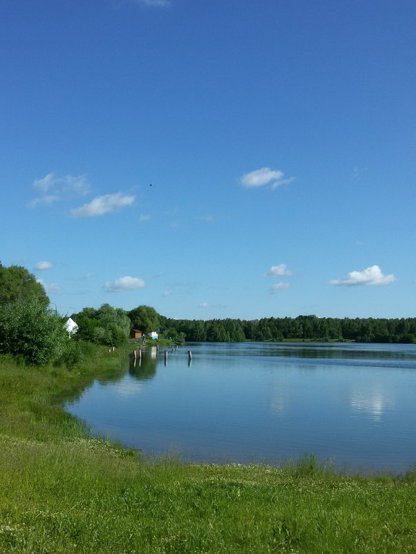 Небо над прудом - swetalana Timofeeva