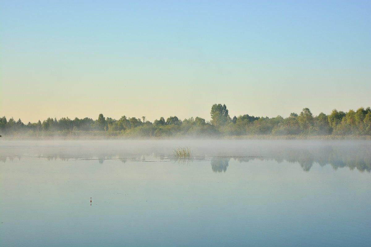 Летнее утро - Юрий