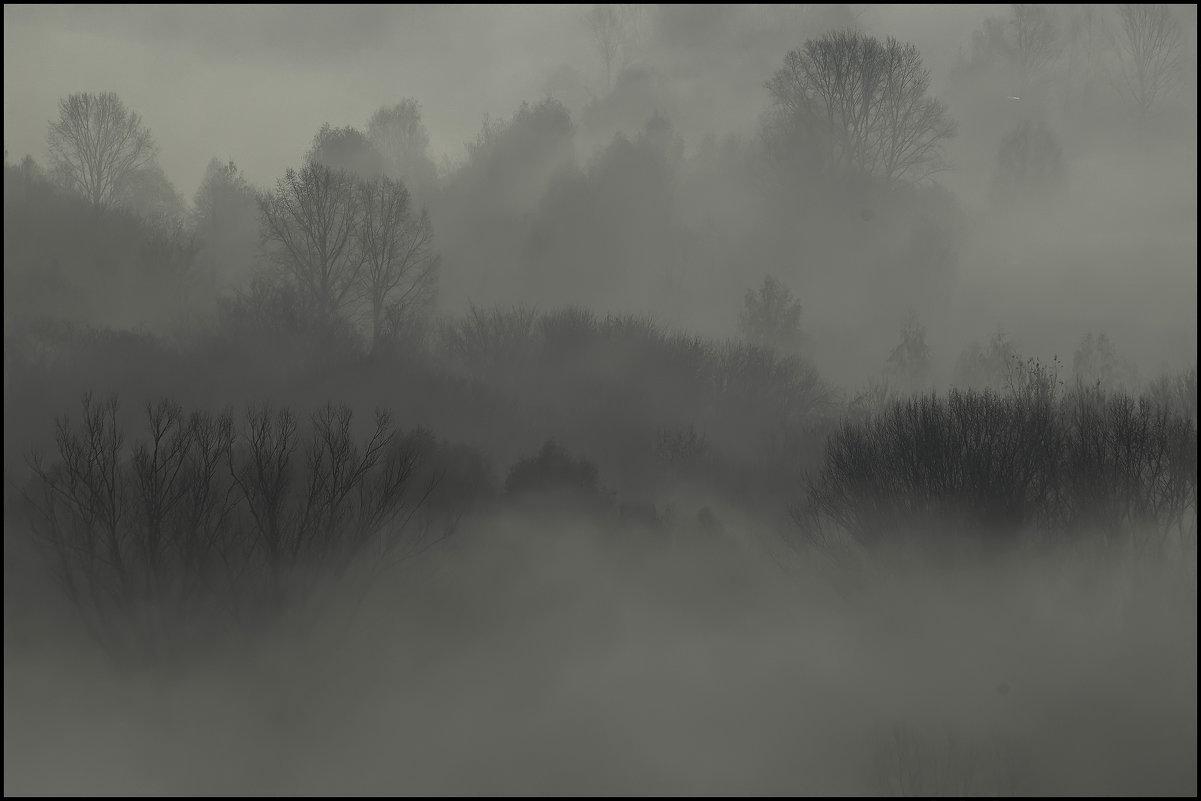 Утро туманное - Алексей Патлах