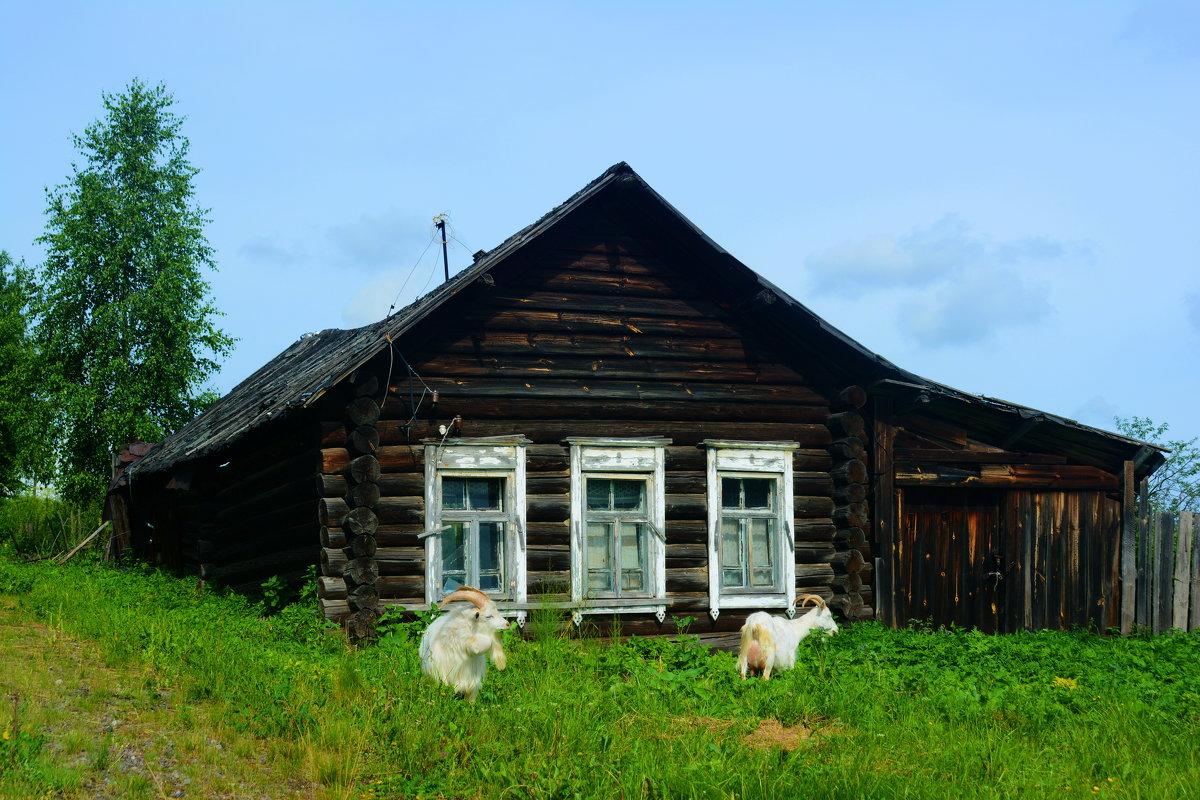 домик в деревне - Александр