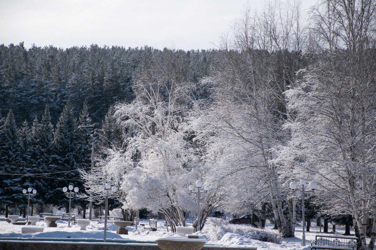 прощание зимы... - Alexandr Staroverov