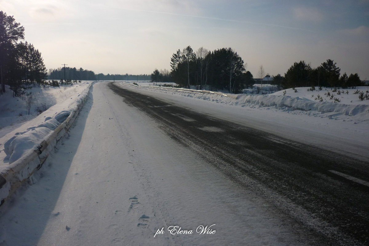 Дорога домой - Elena Wise