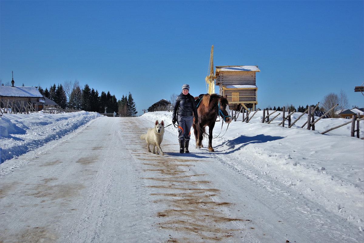 Прибытие коня - Валерий Талашов