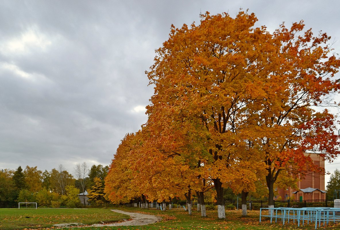 Осень в городе - Геннадий