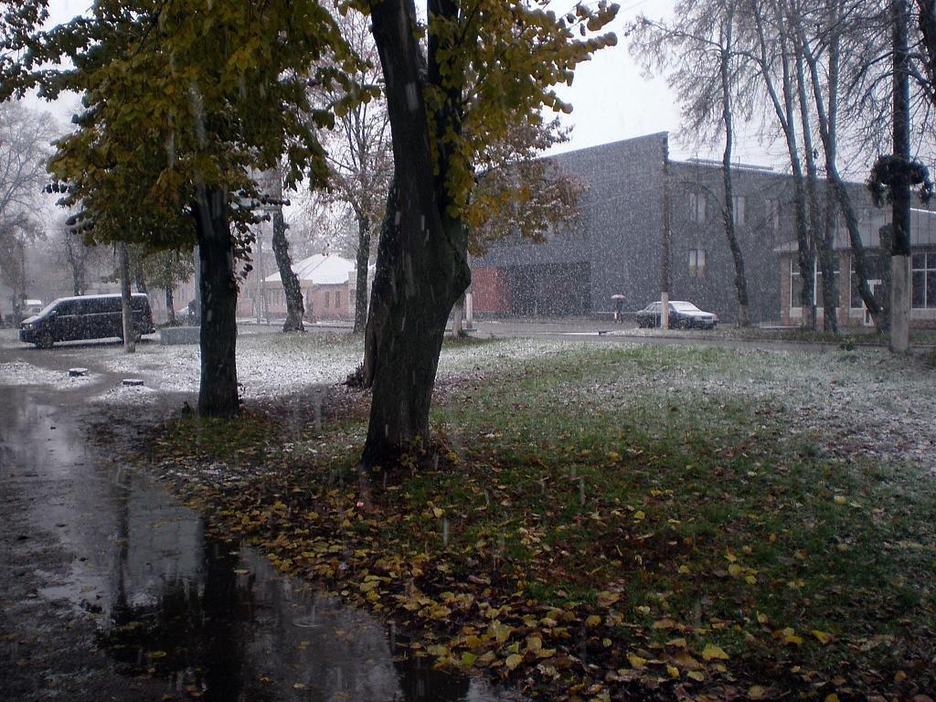 Зима - Роман Савоцкий