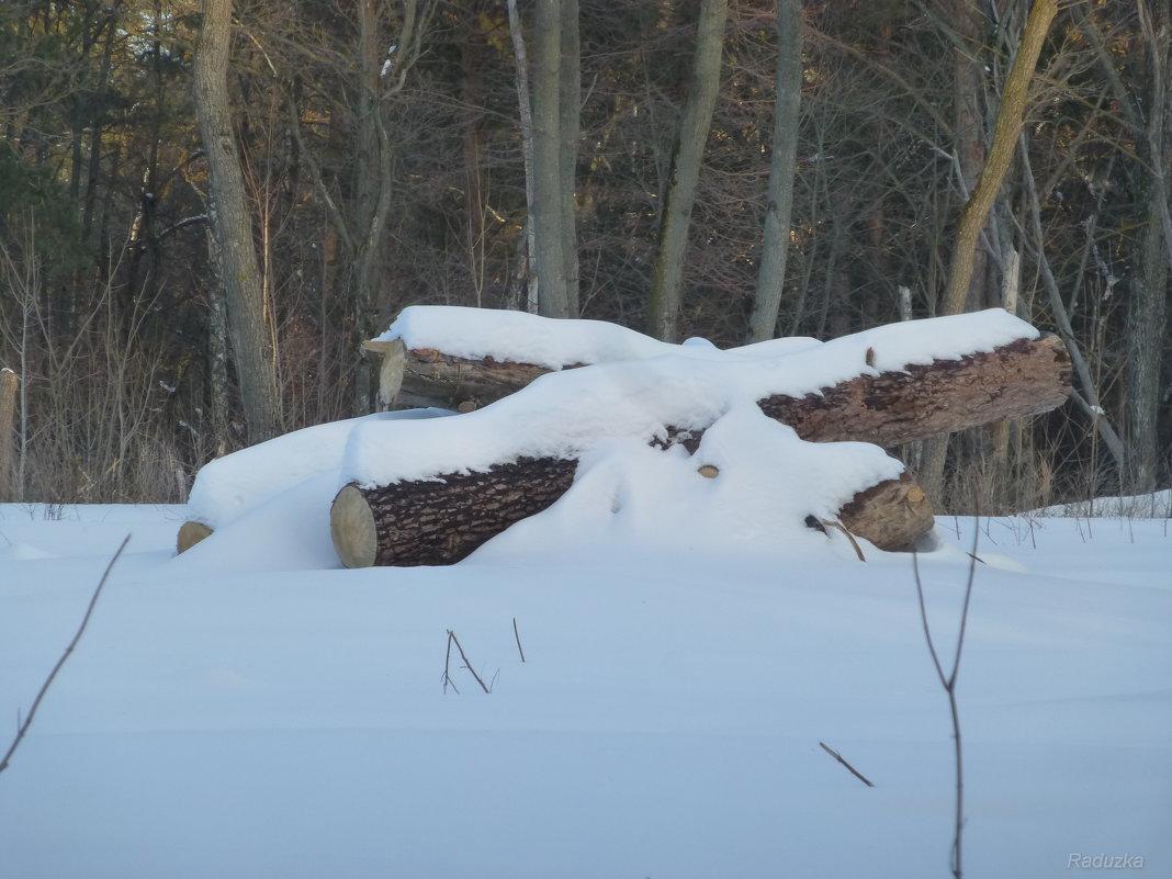 Лес рубят, щепки летят - Raduzka (Надежда Веркина)