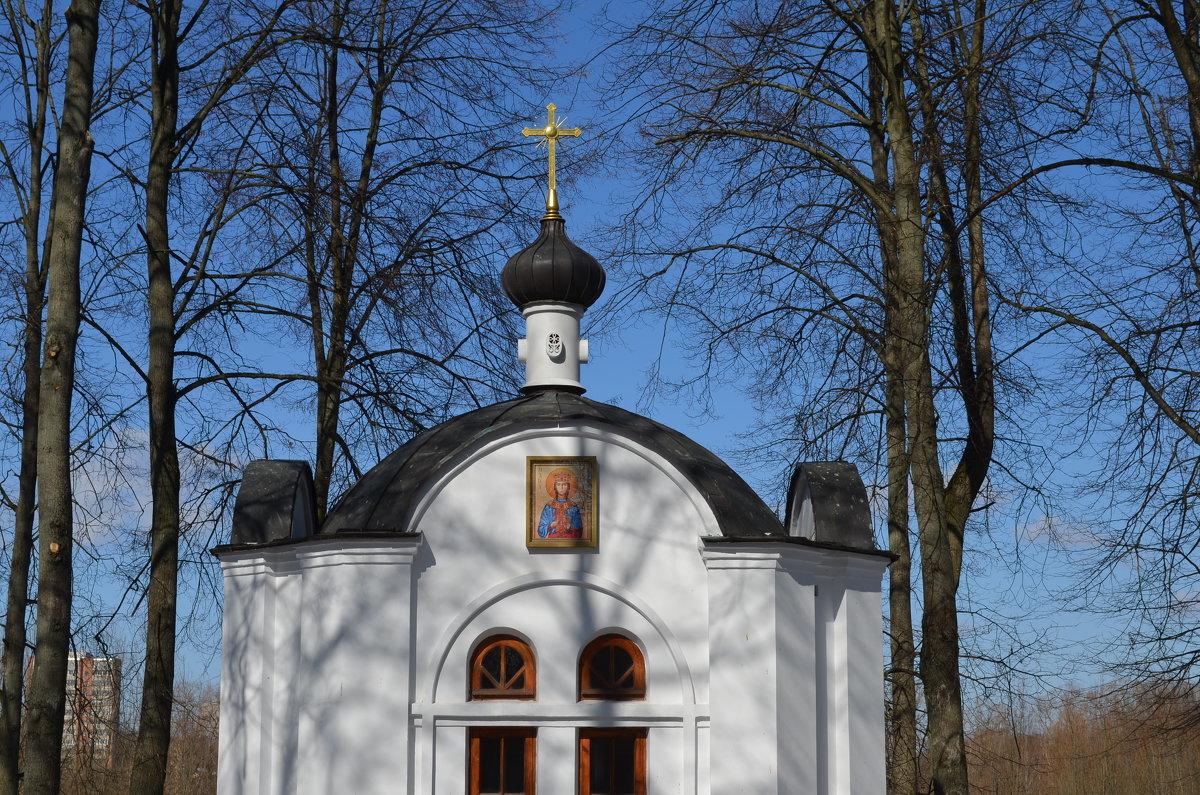 Великие Луки. Екатерининская часовня. 3 апреля 2018 года - Владимир Павлов