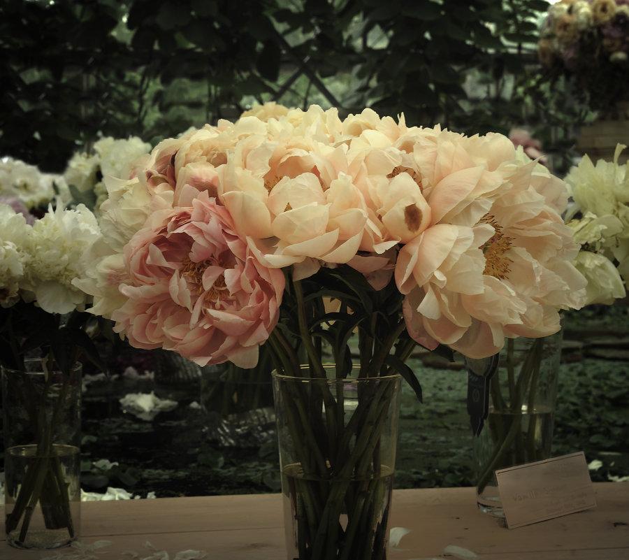 Картинки с выставки. Букет пионов. Pictures from the exhibition. Bouquet of peonies - Юрий Воронов