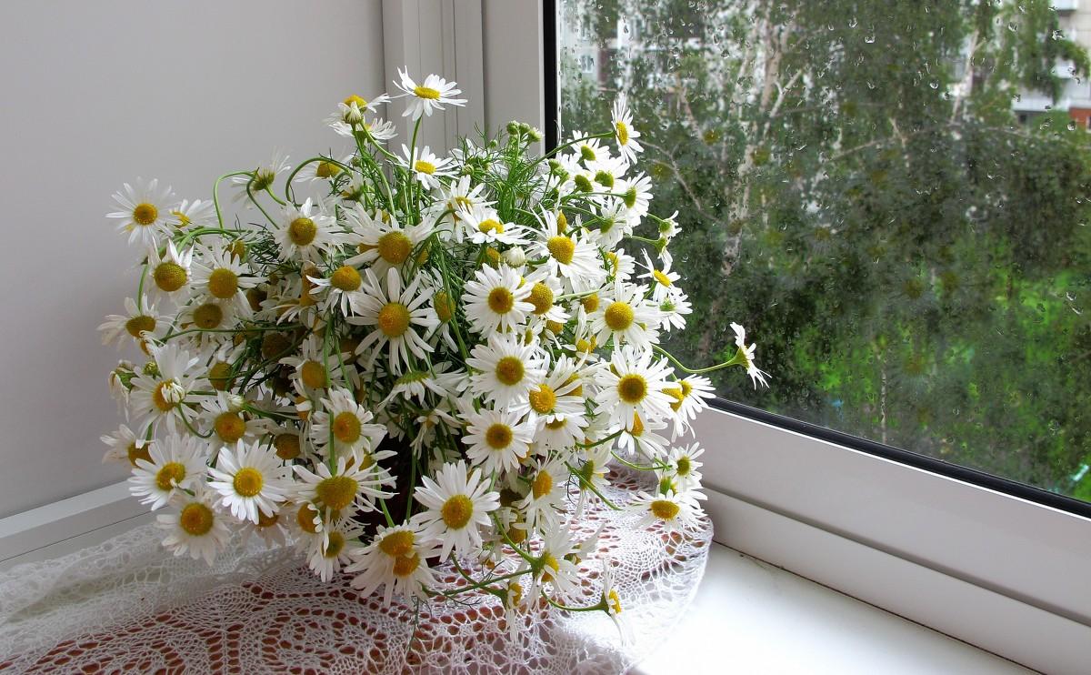 Доставка цветов La Buket  магазин цвeтов