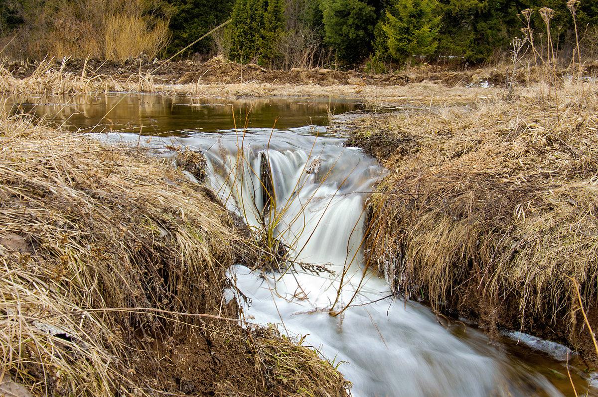 Весенние воды - Владимир Деньгуб