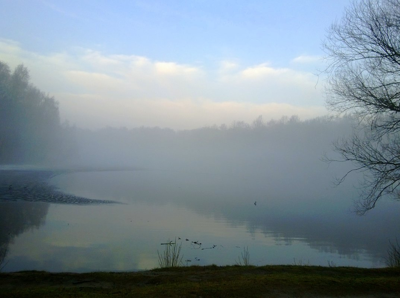 Туман над прудом - Татьяна Лобанова