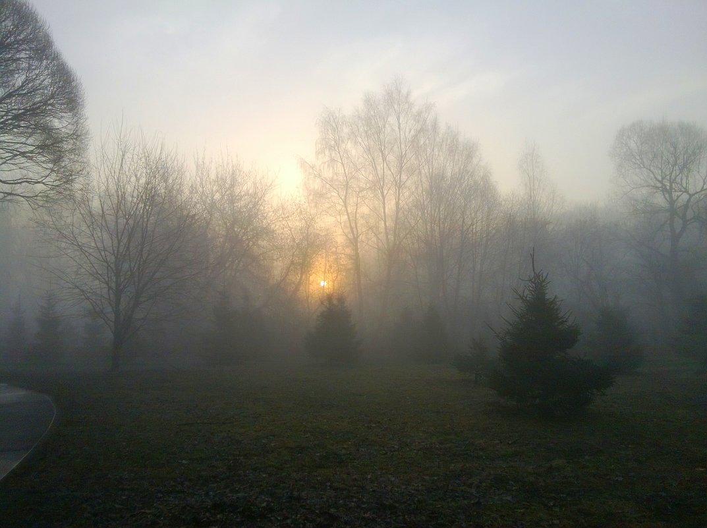 Туманный рассвет - Татьяна Лобанова