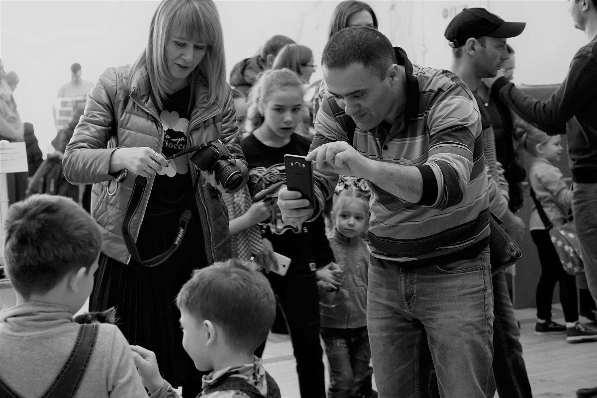 Фотографы на выставке кошек. - Валентина Налетова