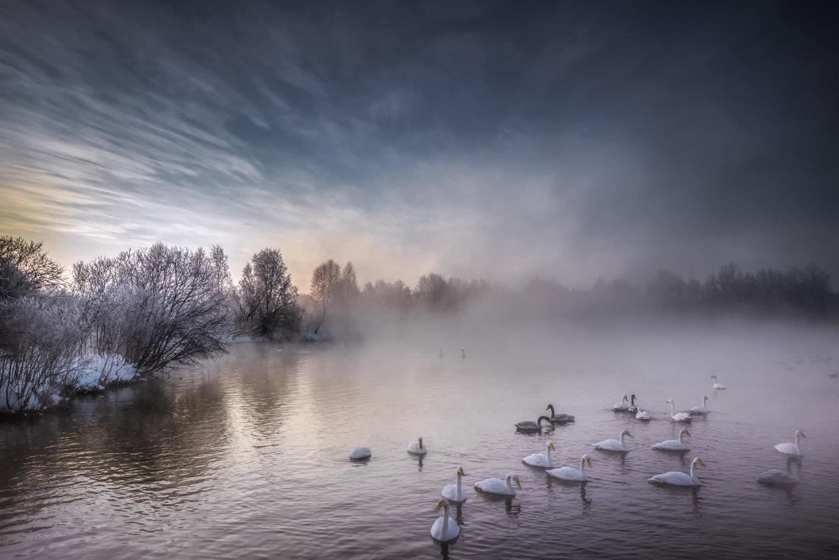 заказника озера путанные природного цель