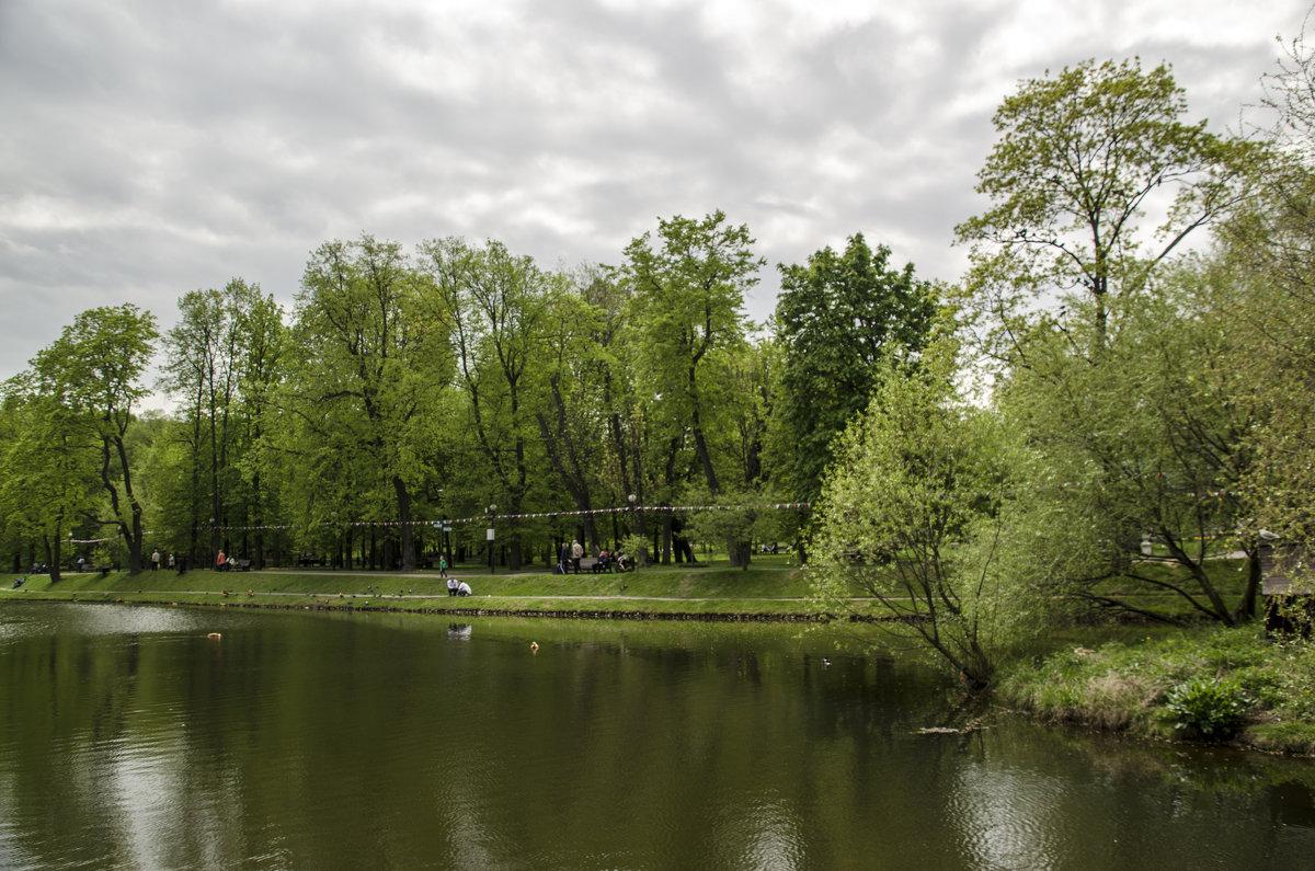 Зелено - Анатолий Цыганок
