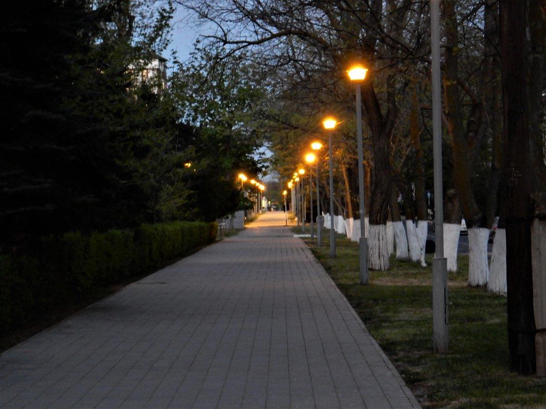 Раннее утро в Анапе - Владимир