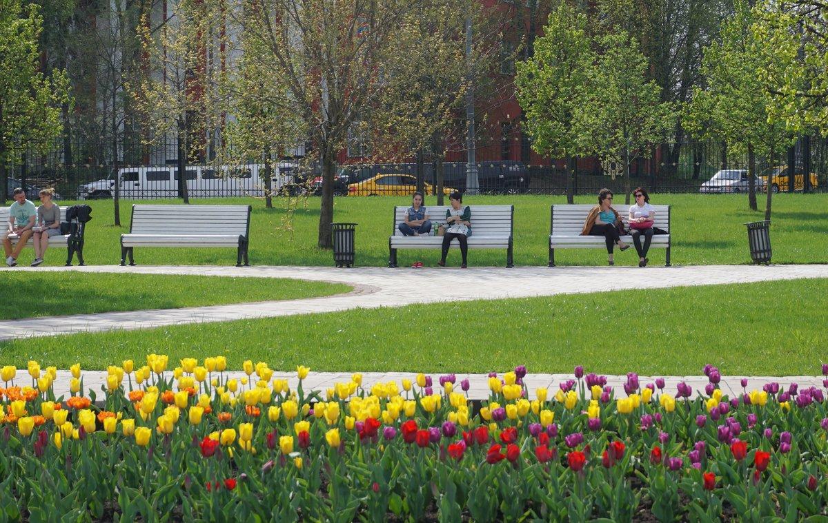 Весна в парке - Ольга
