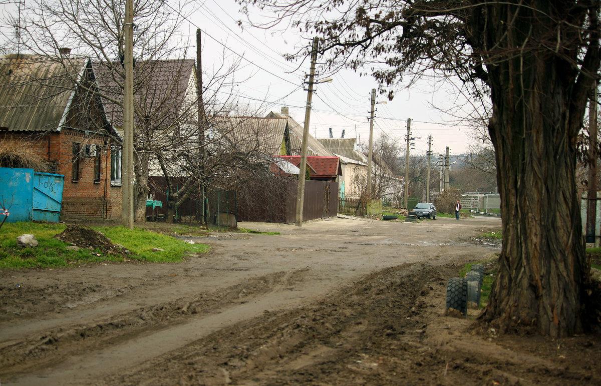 Не далеко от центрального проспекта. - barsuk lesnoi