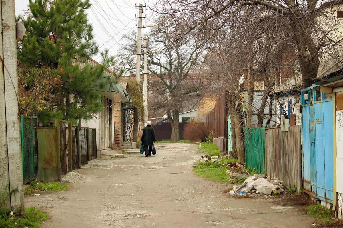 По пути к проспекту... - barsuk lesnoi