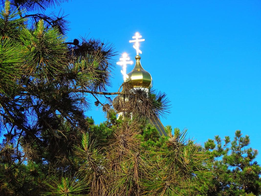 Слово о Кресте-спасение миру, высшая сила от Бога ! - Анатолий Збрицкий