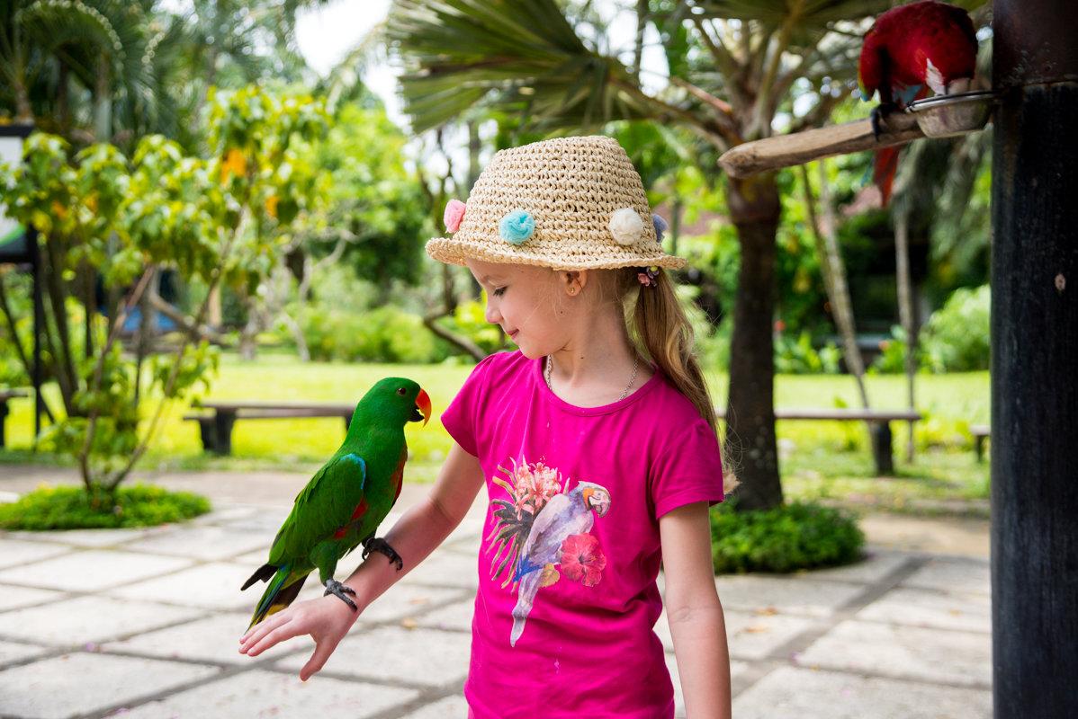 Алиса в парке птиц - Андрей Крючков