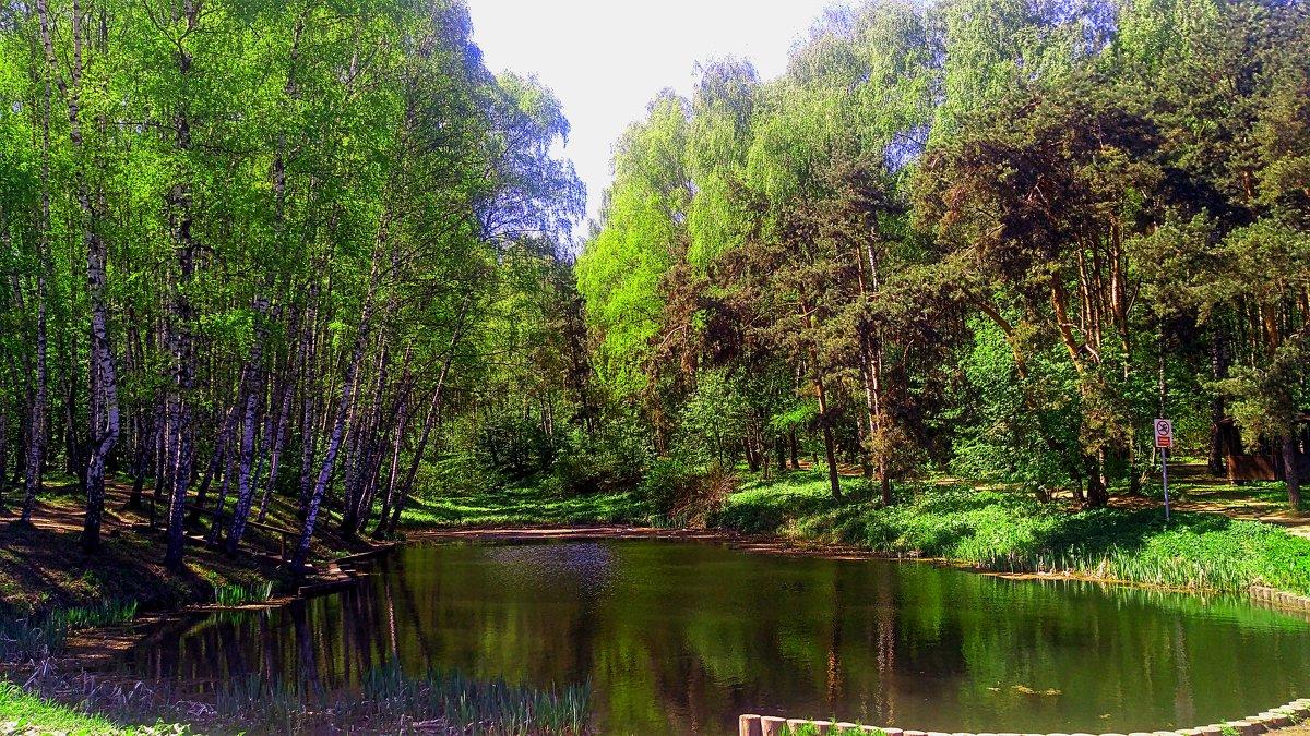 московский весенний пейзаж с окраины) - megaden774