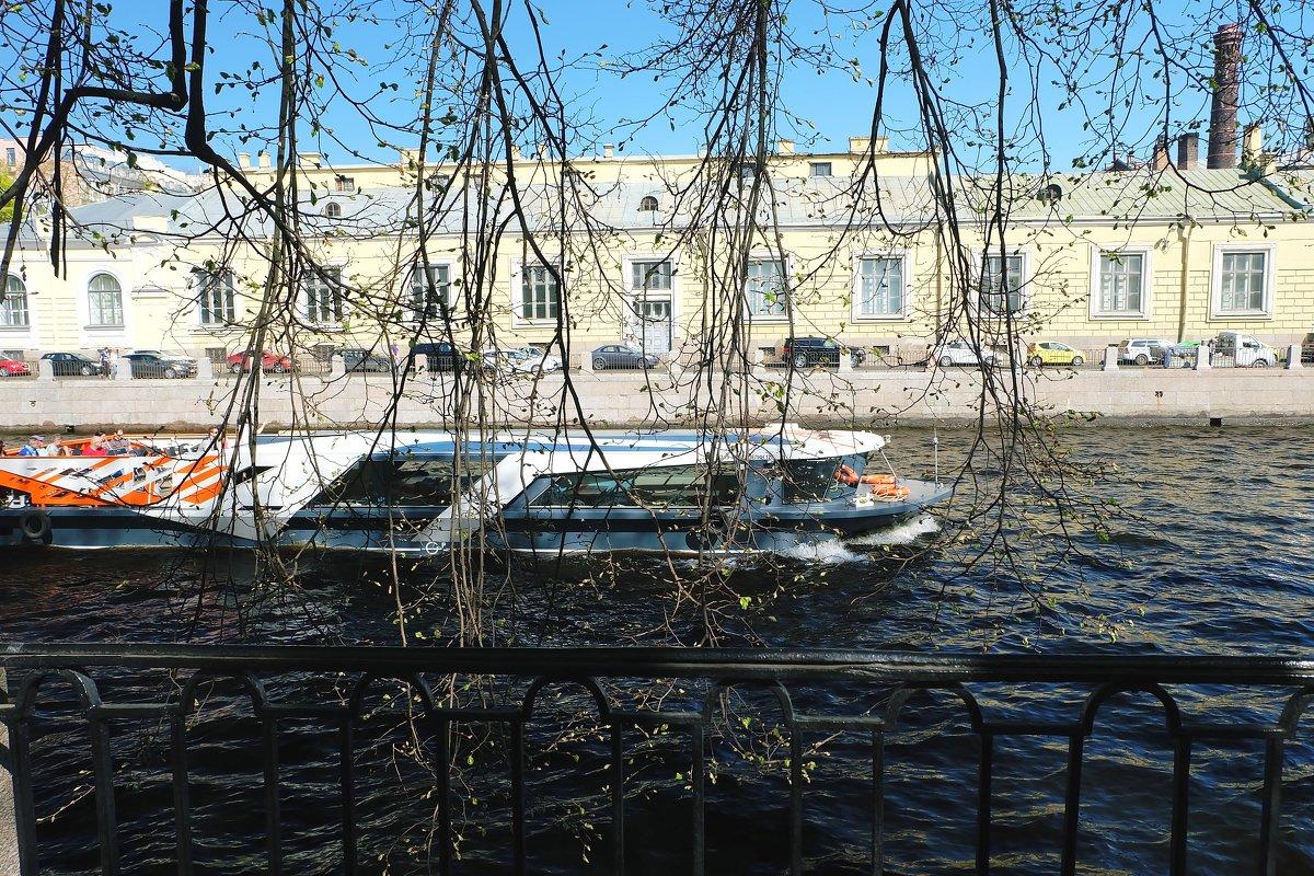 У Летнего сада - Ольга Васильева
