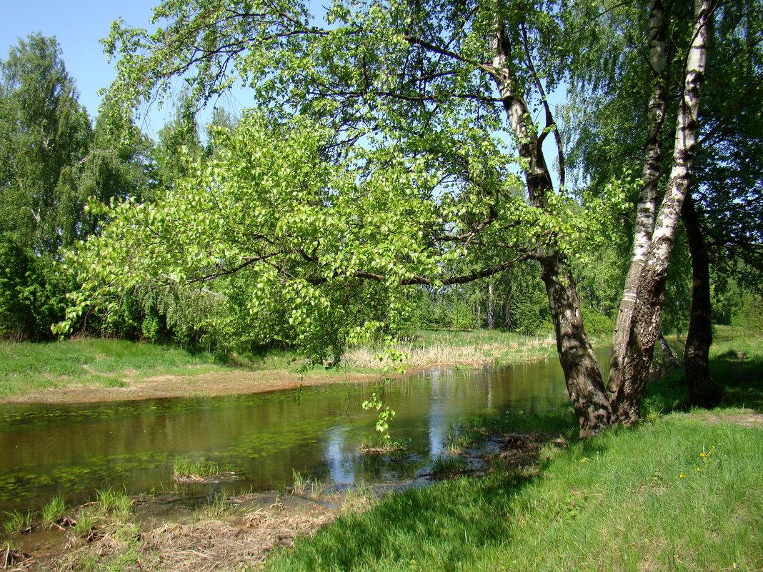 Майским днём у реки - Татьяна Георгиевна