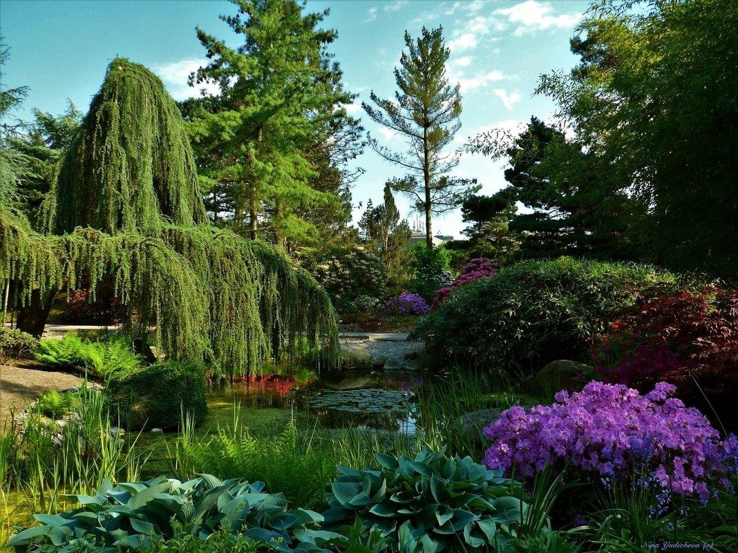 Loki Schmidt Garten Hamburg - Nina Yudicheva