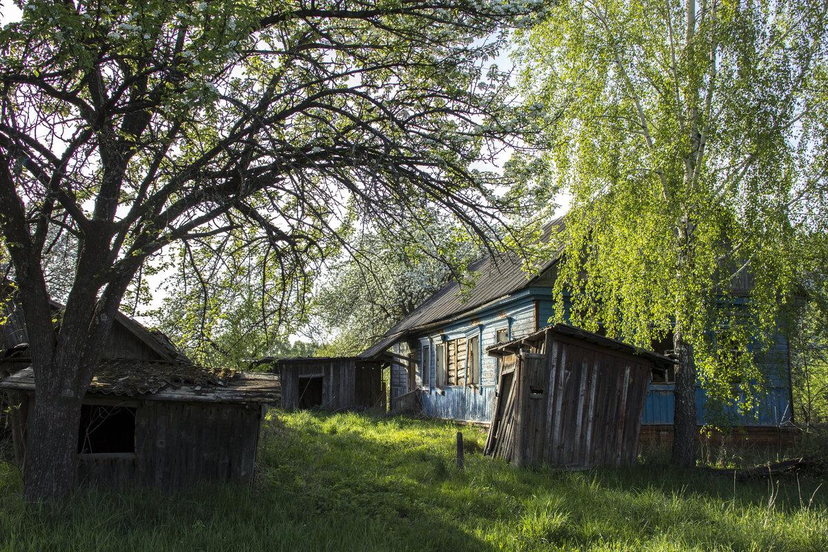 у заброшенного дома - оксана