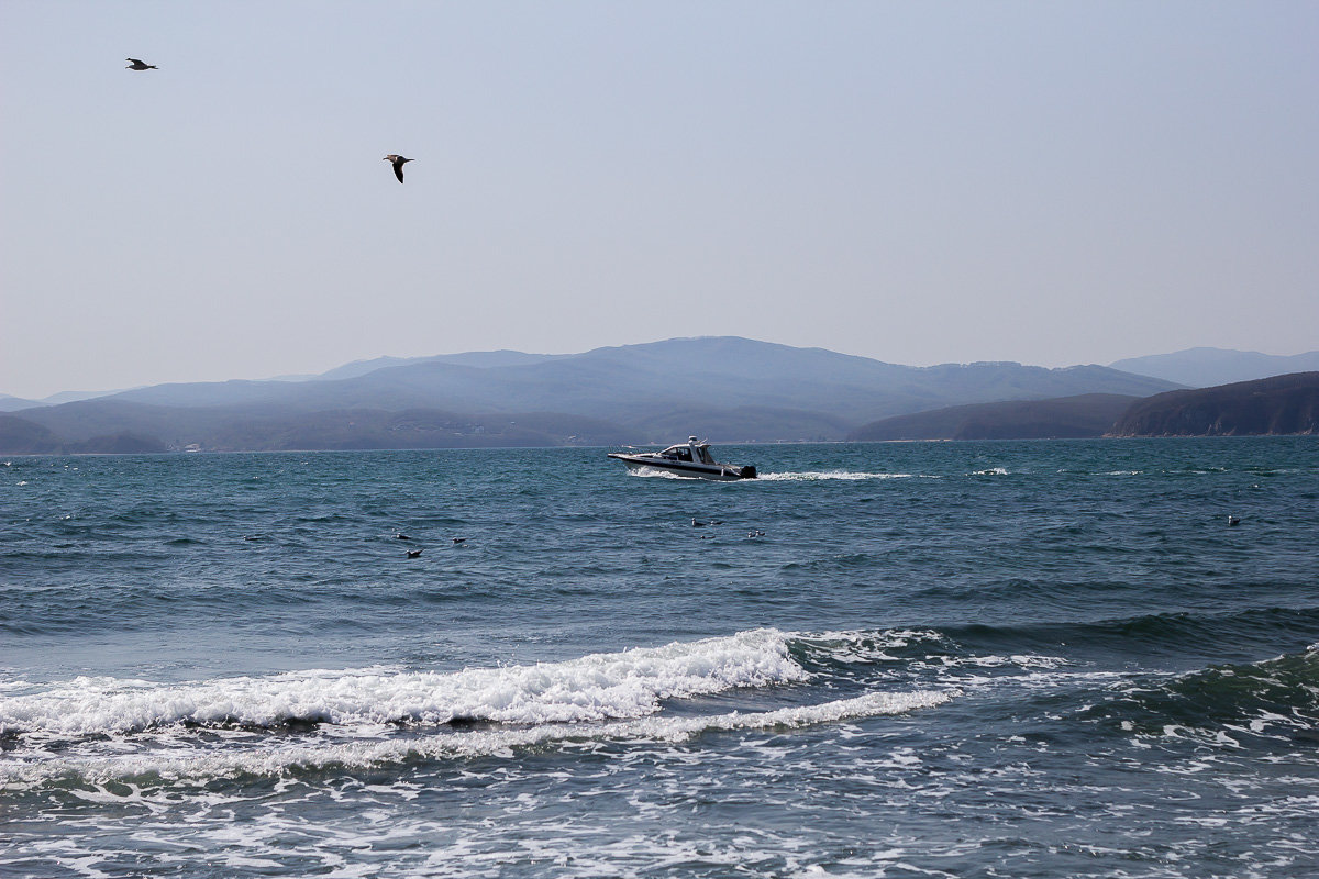 Море - Дарья Бурмистрова