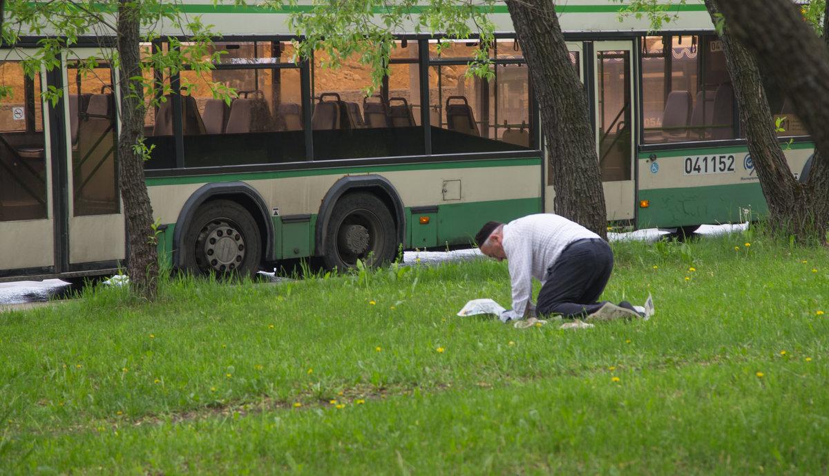 Водитель автобуса или вечерний намаз - Александра