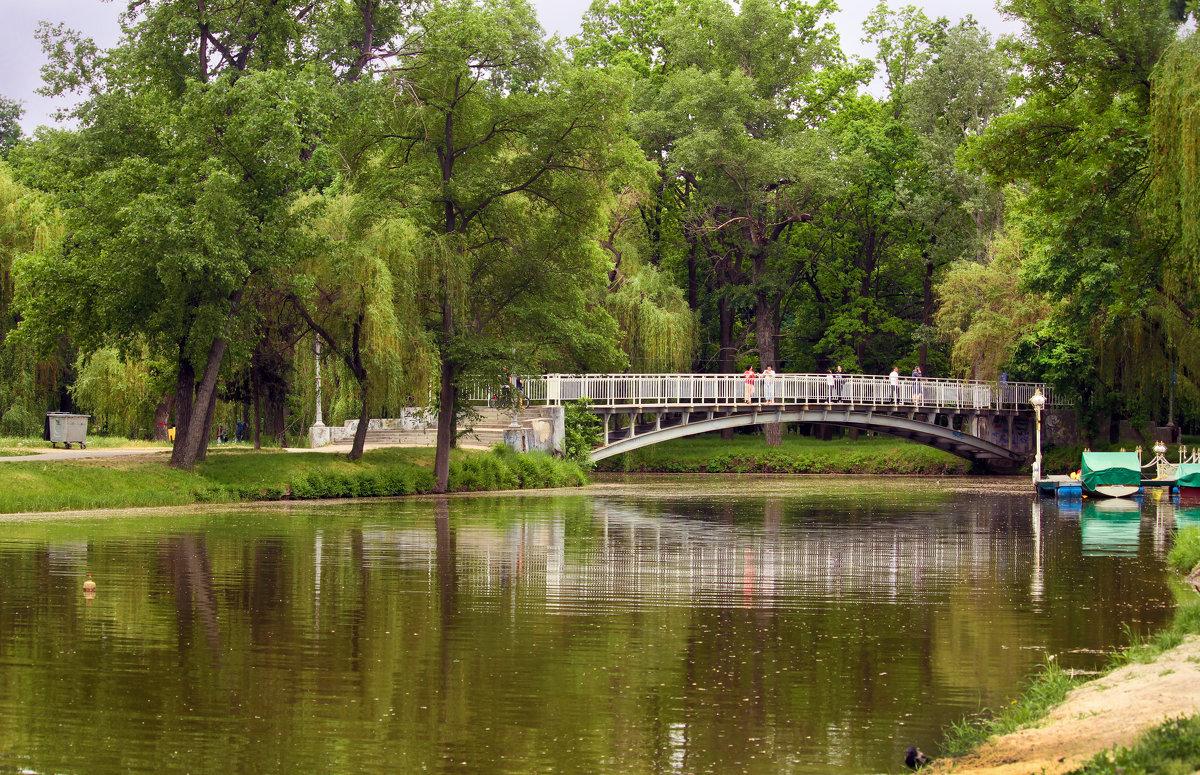 В нашем парке весна! - barsuk lesnoi