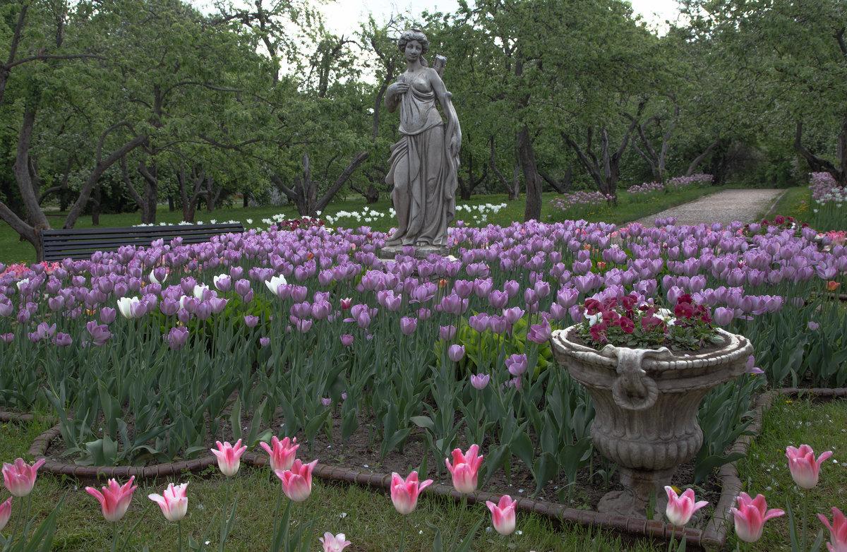 Изобилие весны - Александра