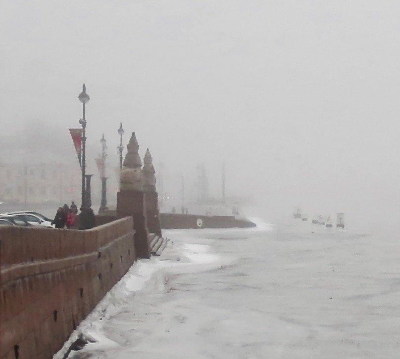 густой туман на Университетской набережной - Елена