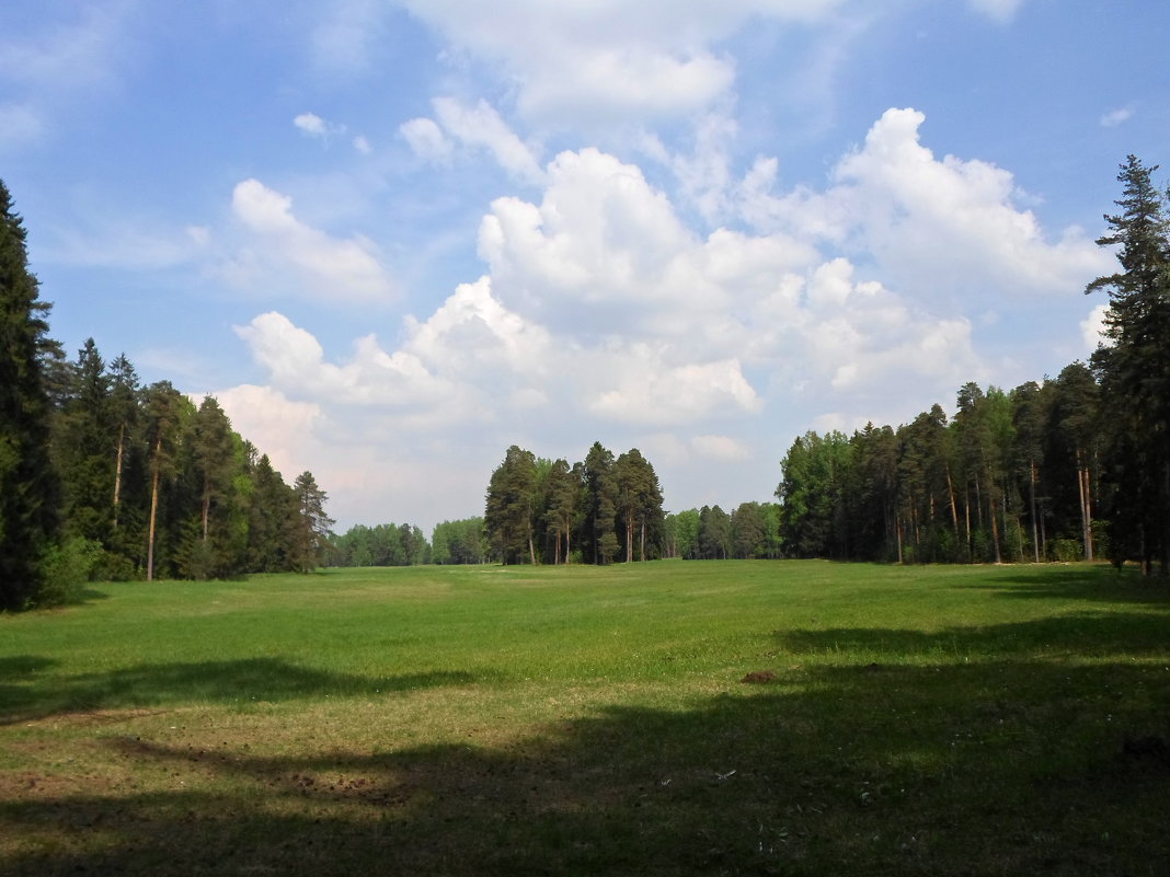 Павловский парк - Lyudmila