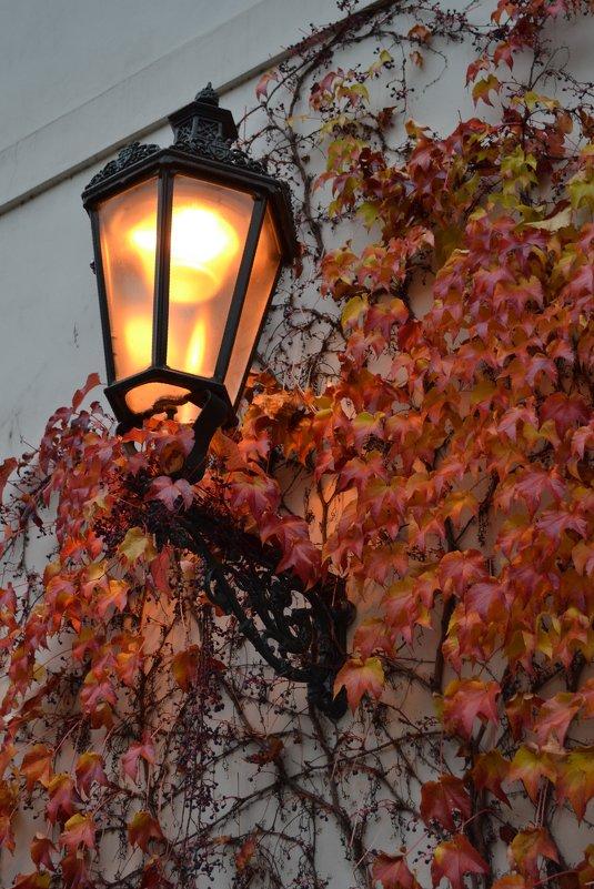 Пражская осень