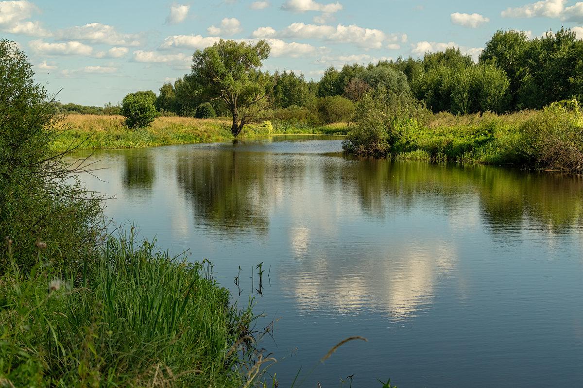 Начало Августа - Андрей Дворников