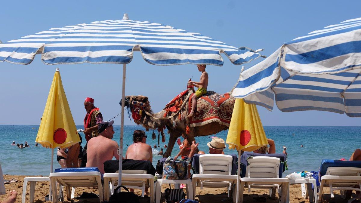 пляж - Dmitry i Mary S