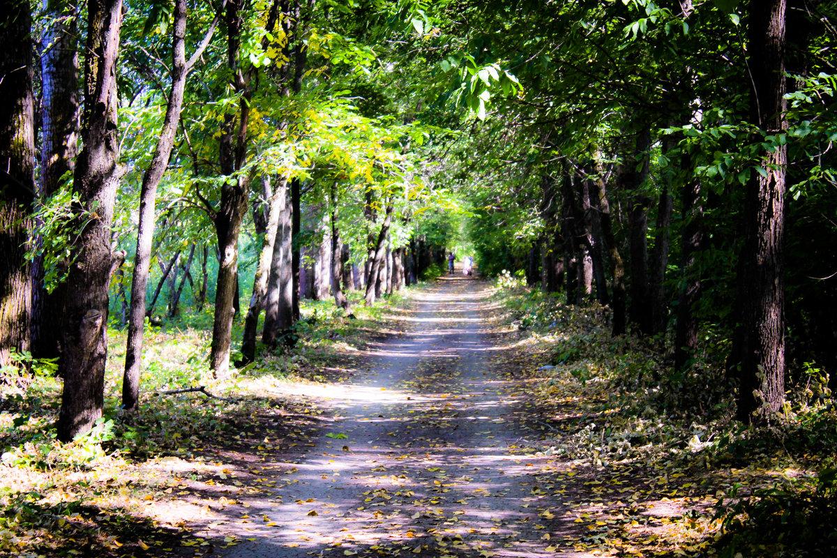 Дорога на плотину - Павел C