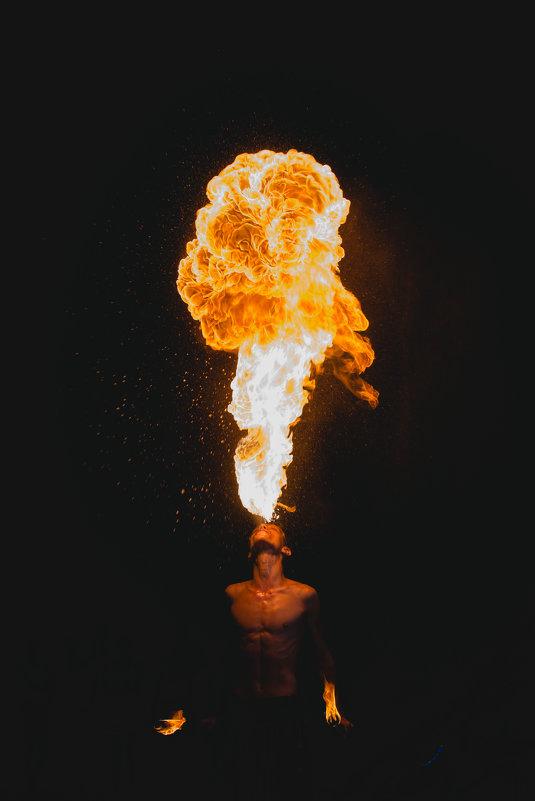 живой огонь - Виктор Пушкин