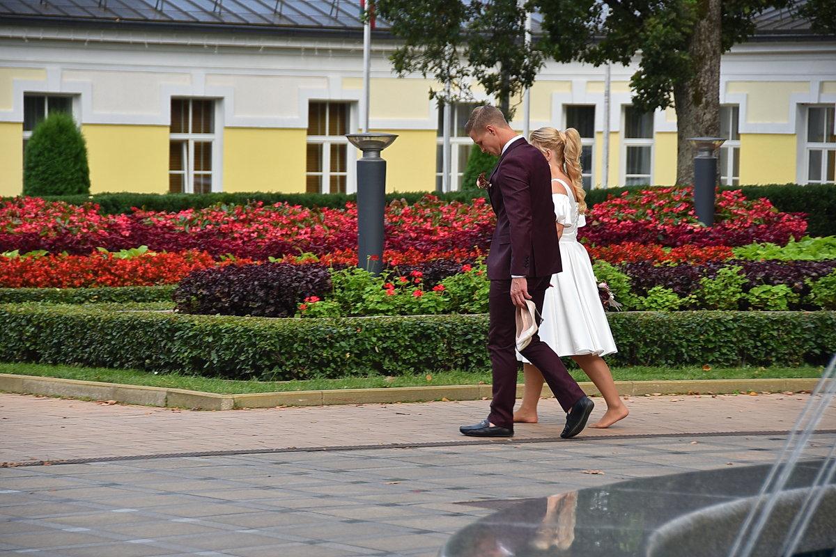 После свадьбы  или поносила и хватит - Николай Танаев