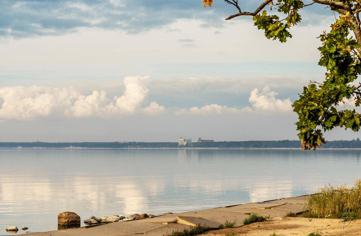 На Финском заливе (29) - Виталий
