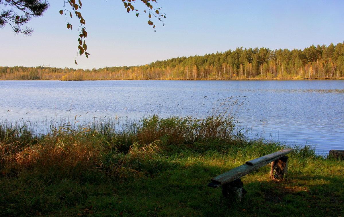 Осень у голубого озера... - Нэля Лысенко