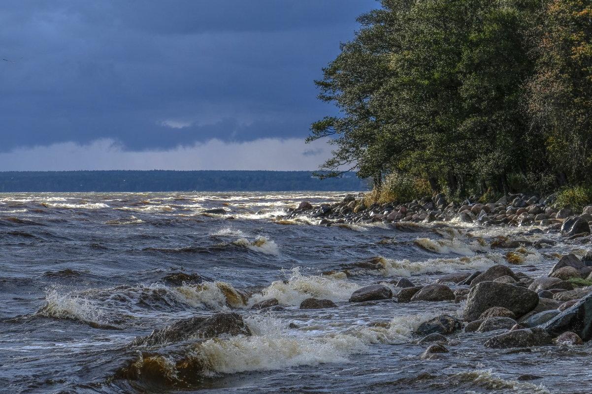 финский залив после шторма - Георгий