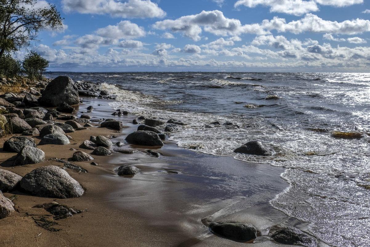 берег финского залива - Георгий