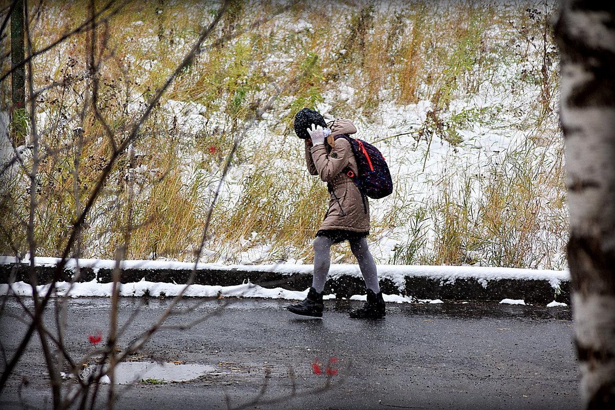 Первый снег.. - Александр Шимохин
