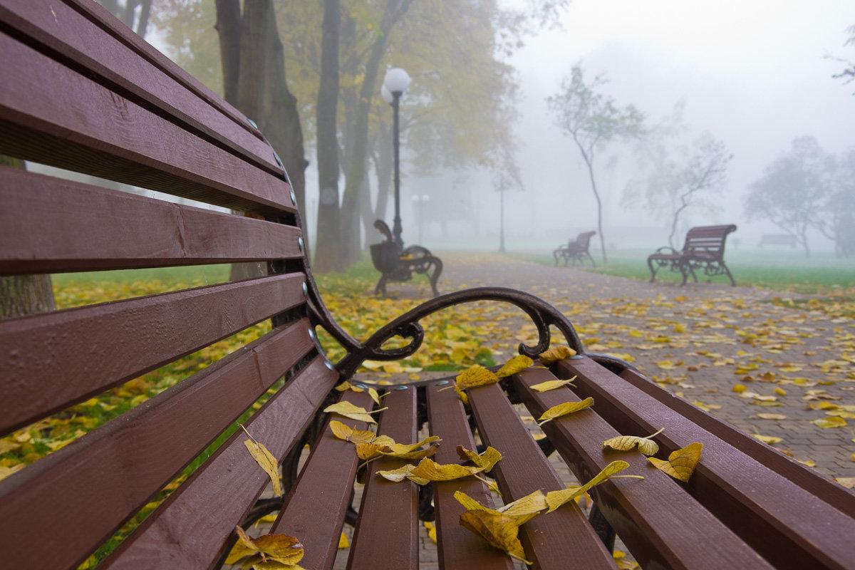 Утро в парке - Александр Крупский