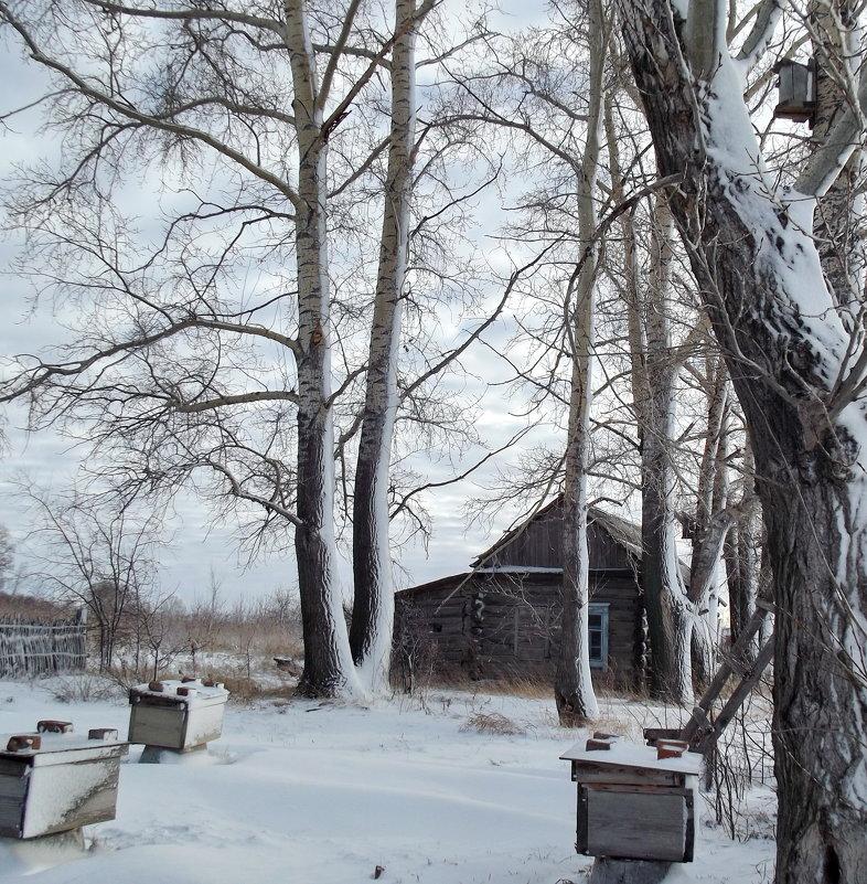 Начало ноября... - Светлана Рябова-Шатунова