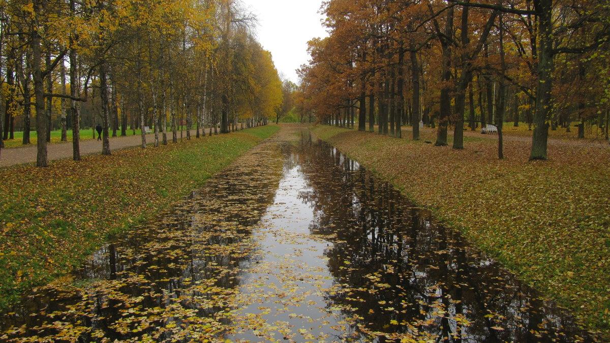 Александровский парк. Крестовый канал